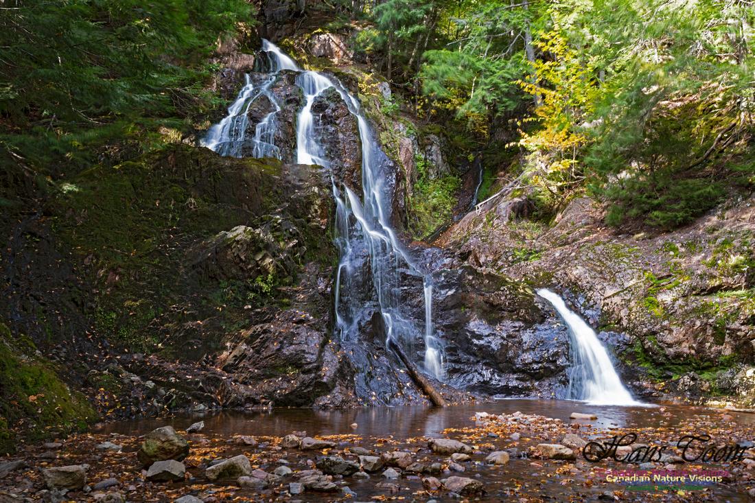 Wentworth Falls 102