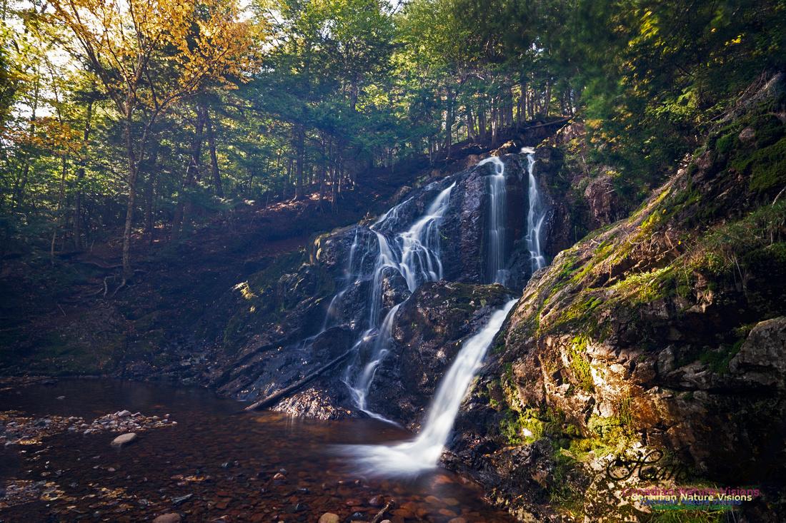 Wentworth Falls 105