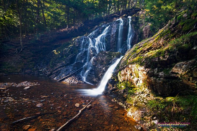 Wentworth Falls 106