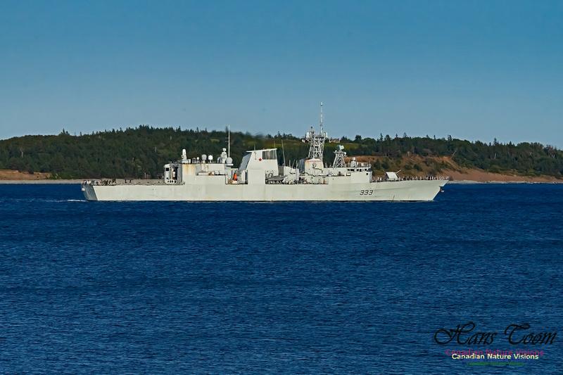 HMCS Toronto 101