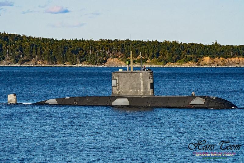 HMCS Windsor 100