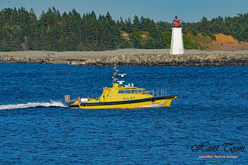 Pilot off McNabs Island Light 100