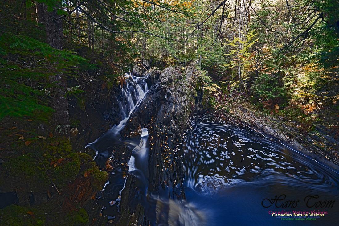Nuttall Brook Falls 108