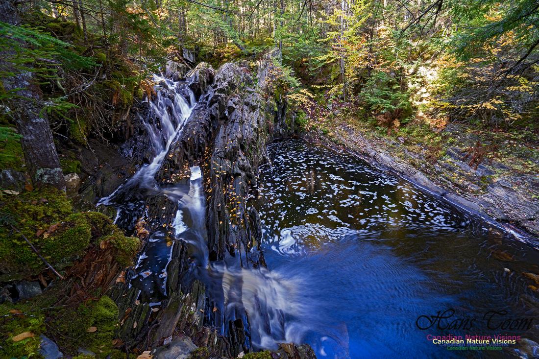 Nuttall Brook Falls 111