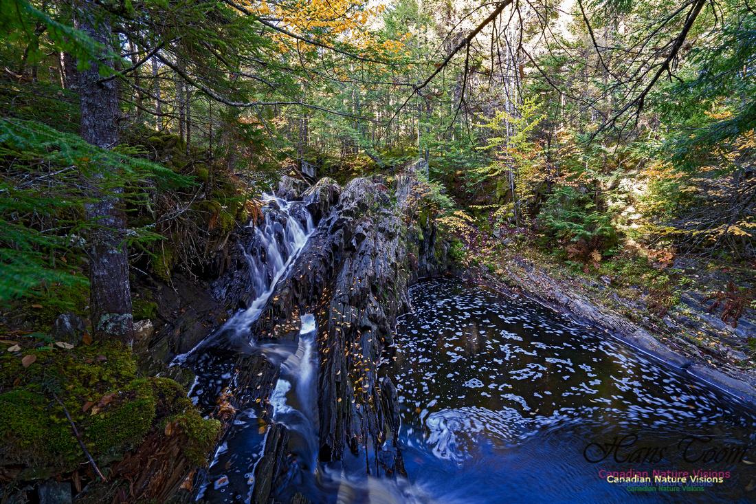 Nuttall Brook Falls 112