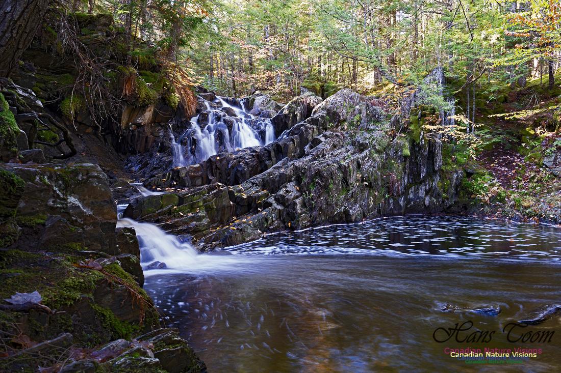 Nuttall Brook Falls 101