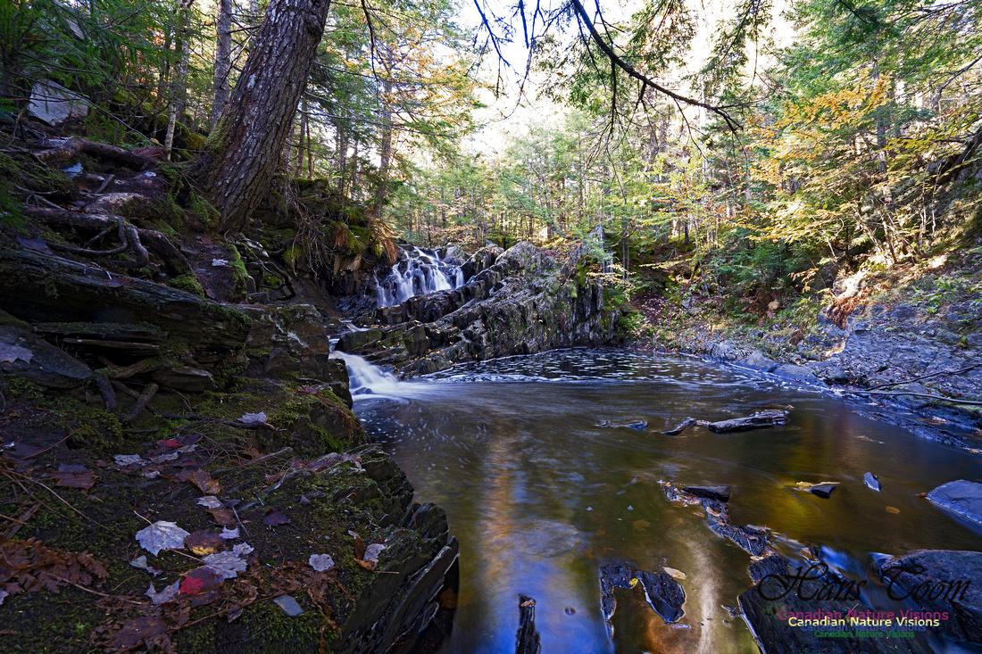 Nuttall Brook Falls 102