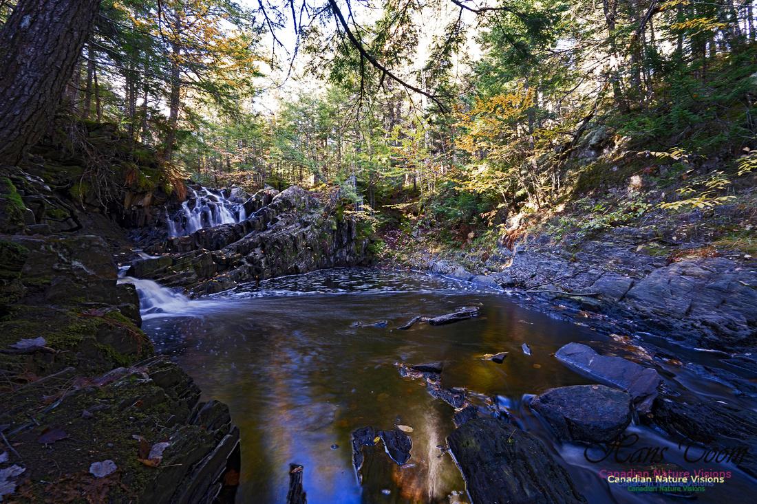 Nuttall Brook Falls 103