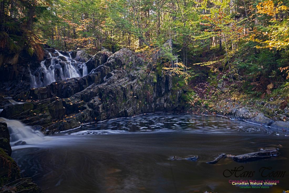 Nuttall Brook Falls 104
