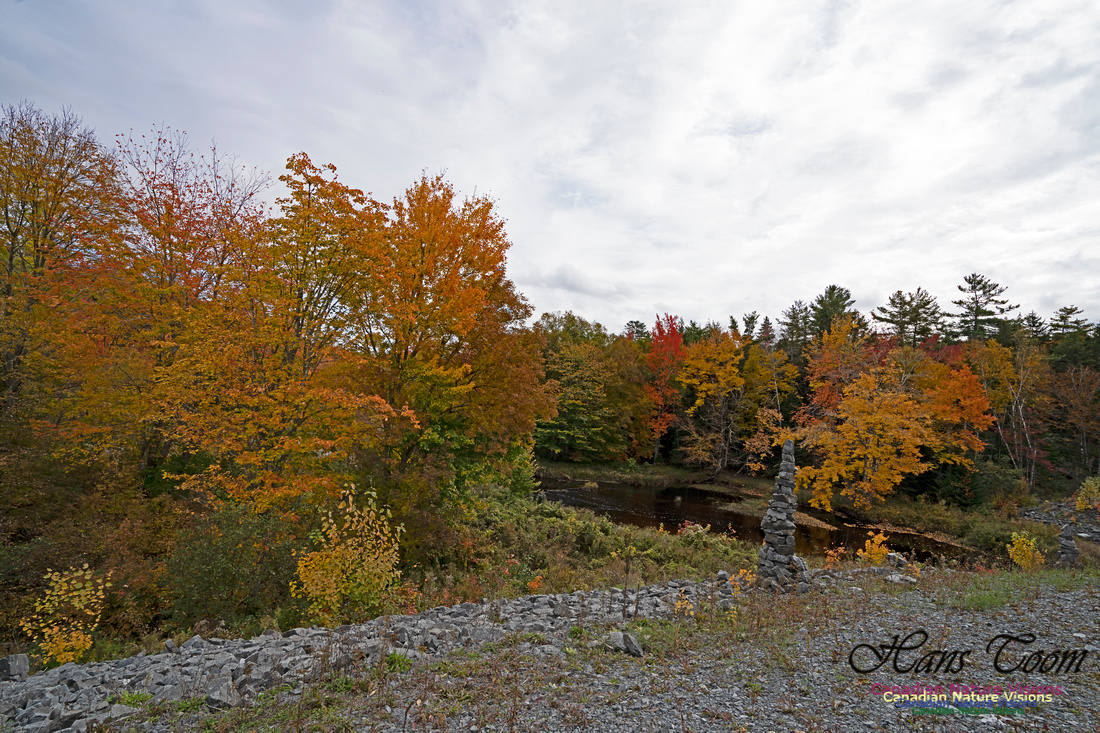 Fall Colours and Reflections 111