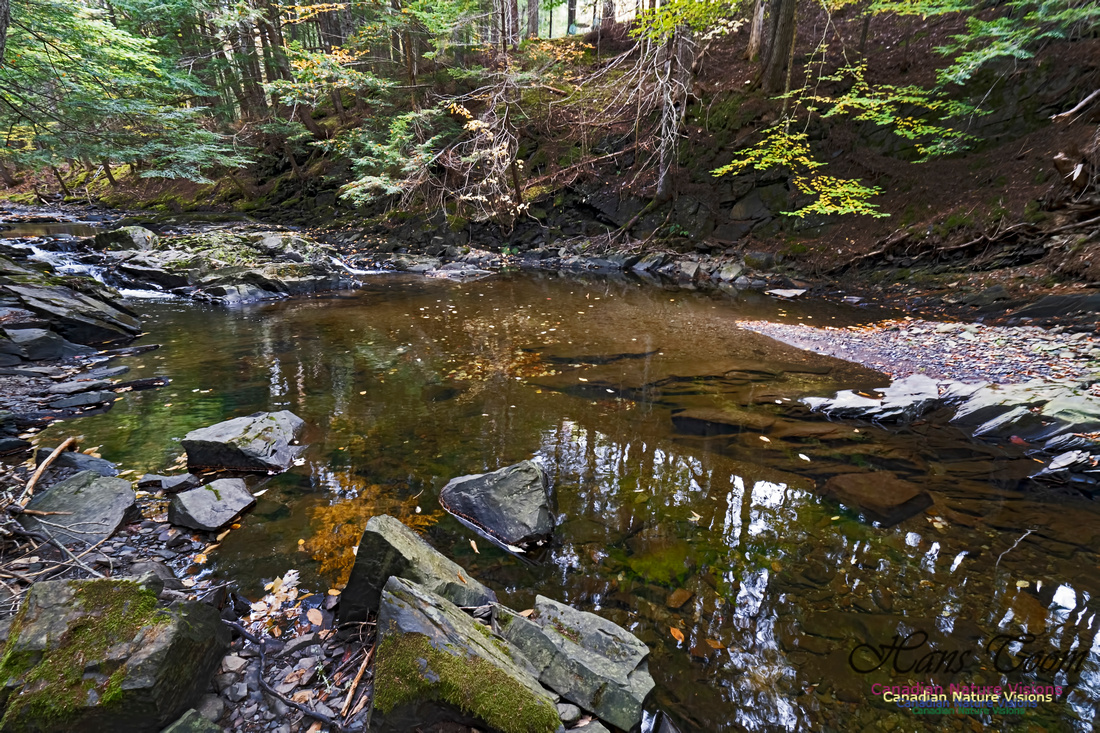 Fall Colours and Reflections 121