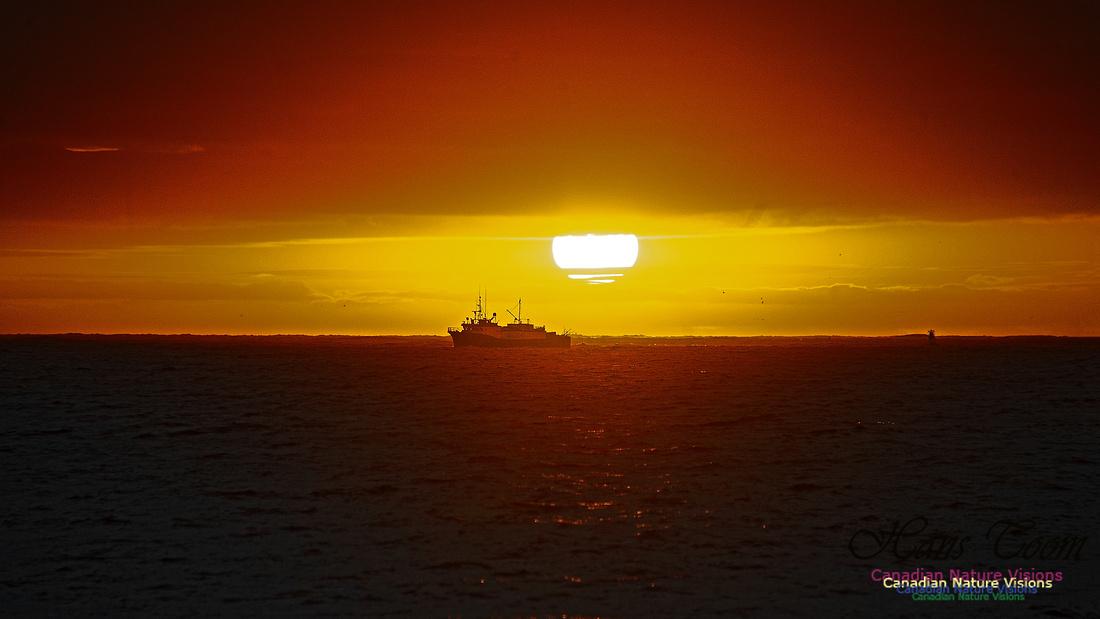 Dawn Over Sambro Islands 107