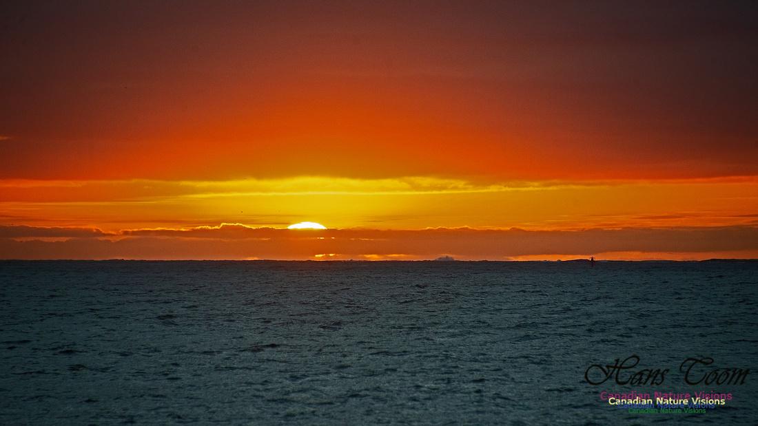 Dawn Over Sambro Islands 110