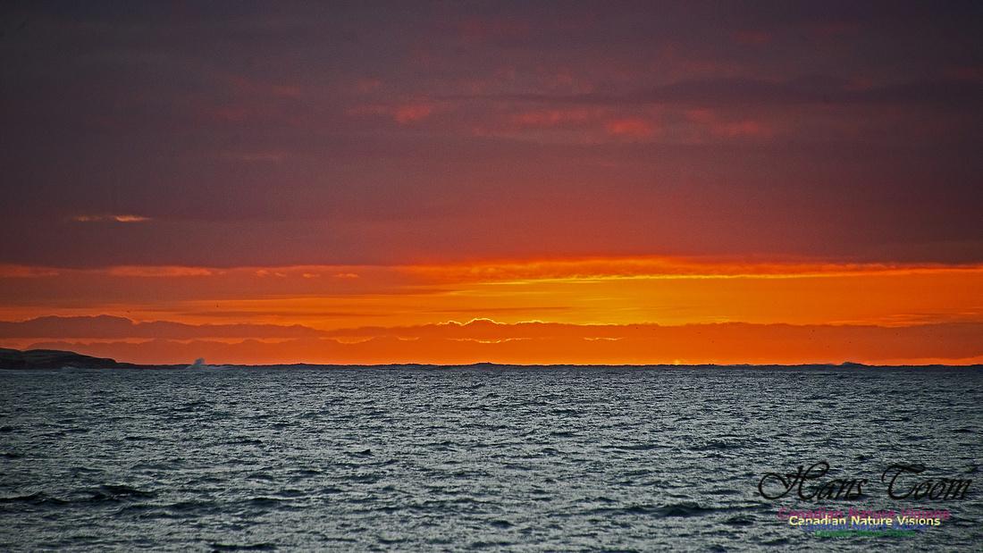 Dawn Over Sambro Islands 111