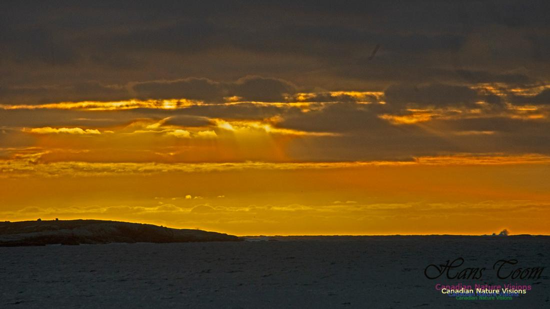 Dawn Over Sambro Islands 102