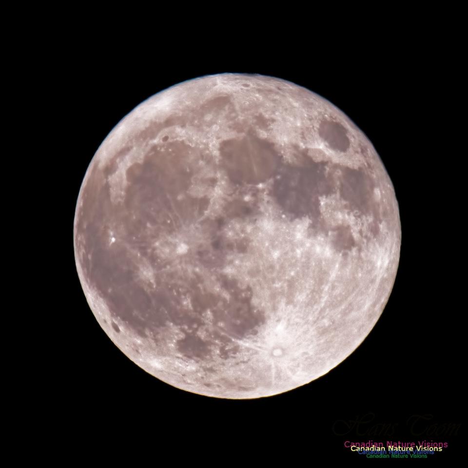 Blue Moon October 31, 2020 4