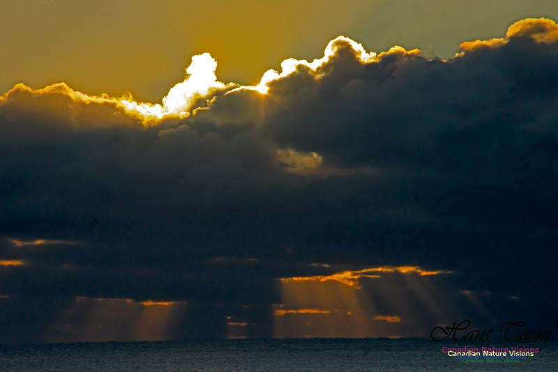 Sunrise 2020-11-19 103