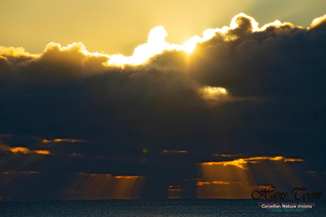 Sunrise 2020-11-19 102