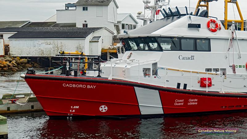 CCGS Cadboro Bay 100