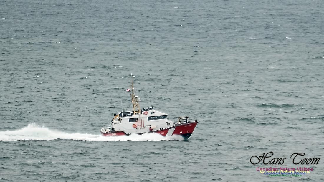 Cadboro Bay 123