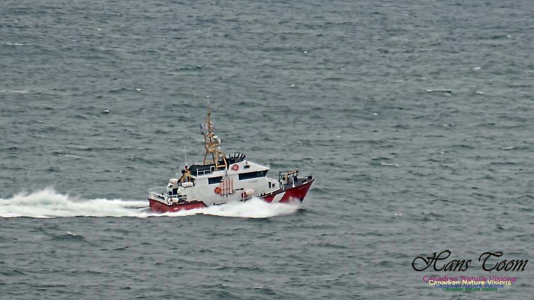 Cadboro Bay 121