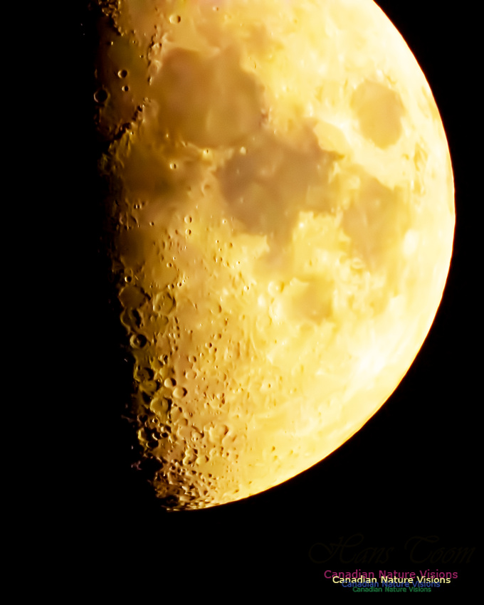 Peggy's Cove Moon 101