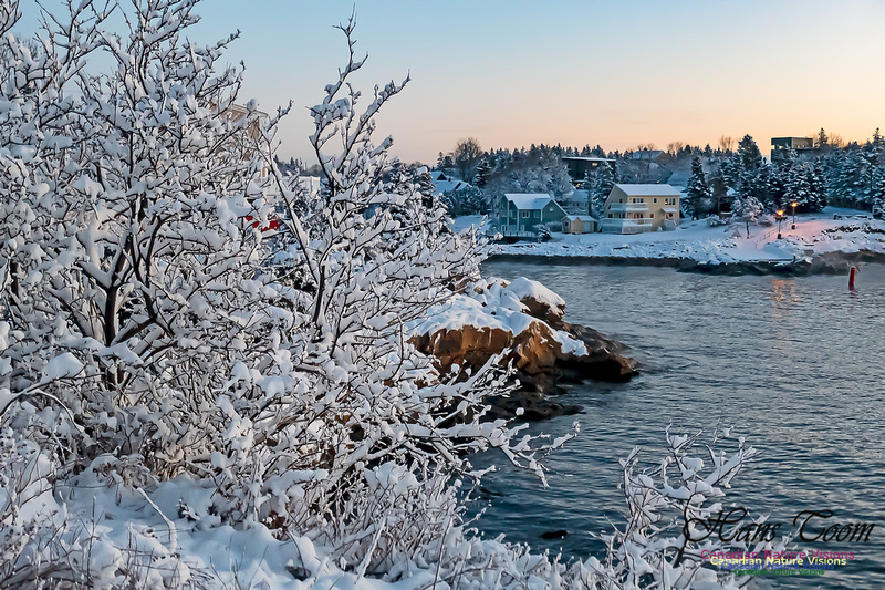 Sunrise and Snow at Herring Cove 113