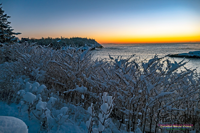 Sunrise and Snow at Herring Cove 108