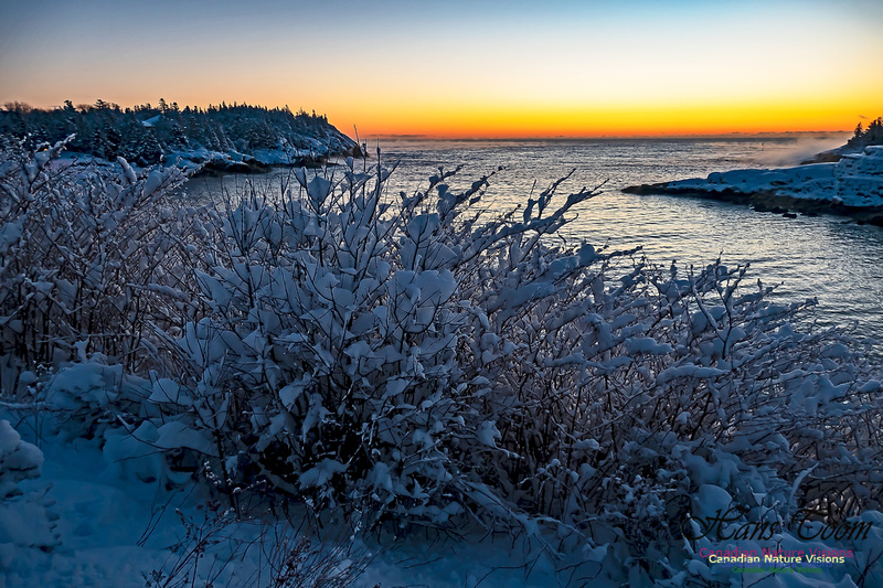 Sunrise and Snow at Herring Cove 109