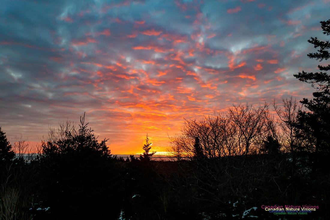 Unusual Sunrise 103