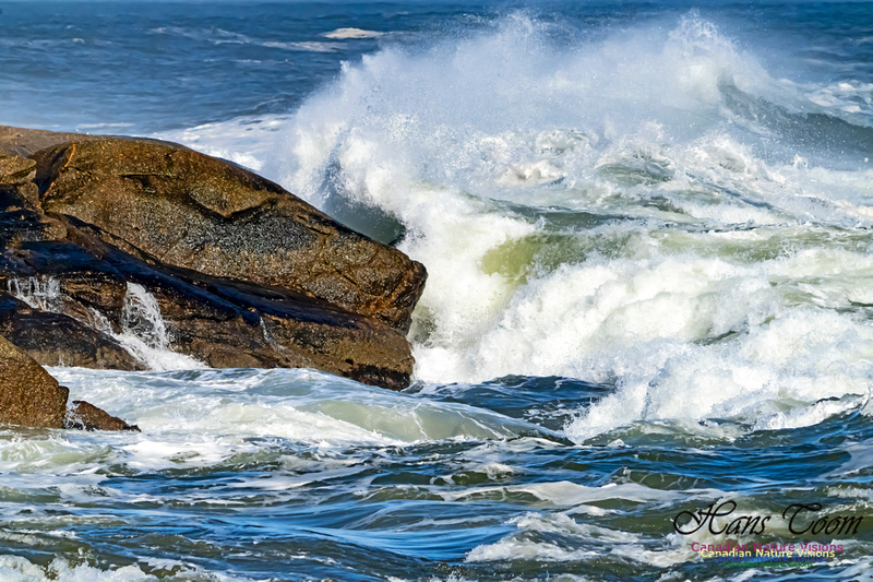 Surf on Rocks 105