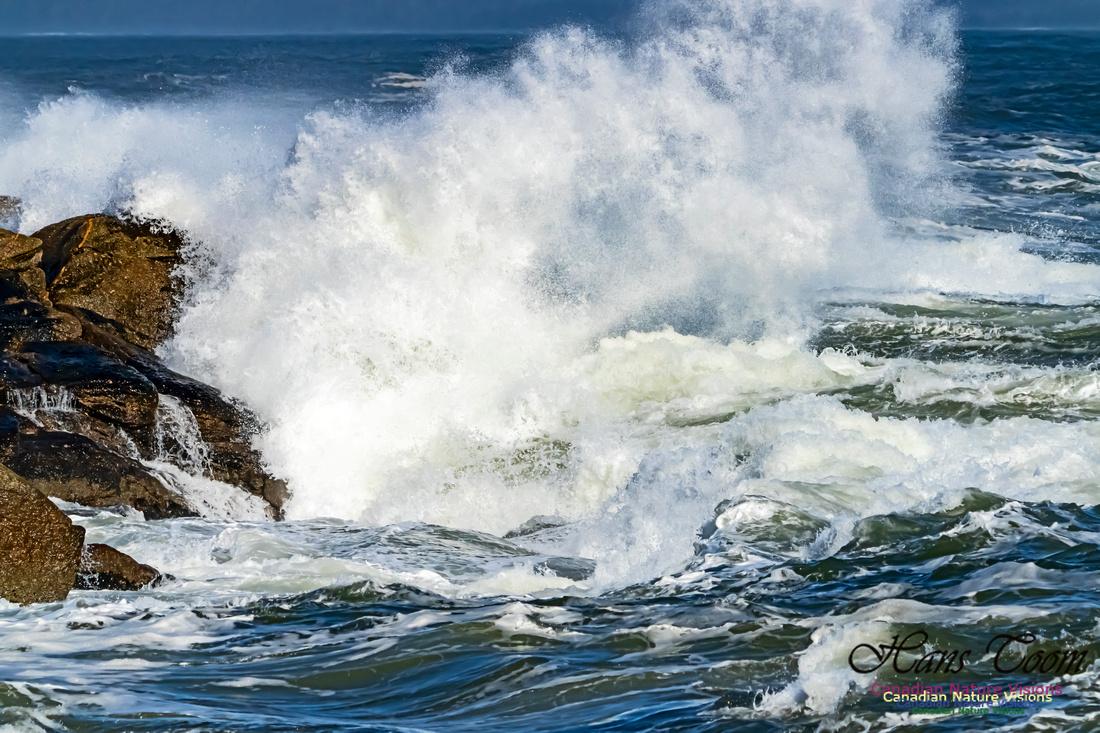 Surf on Rocks 104