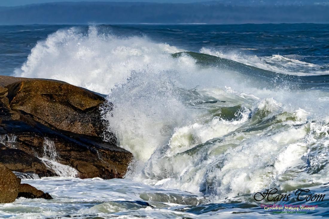 Surf on Rocks 106