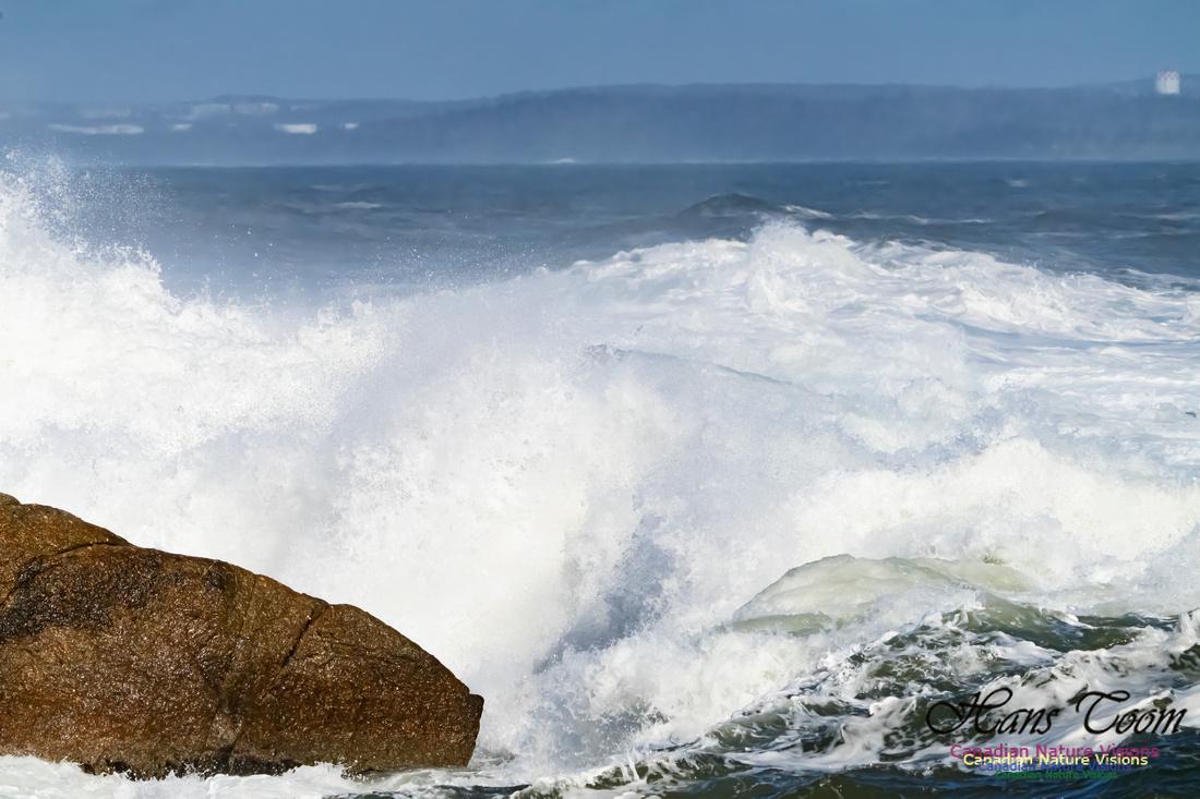 Surf on Rocks 101