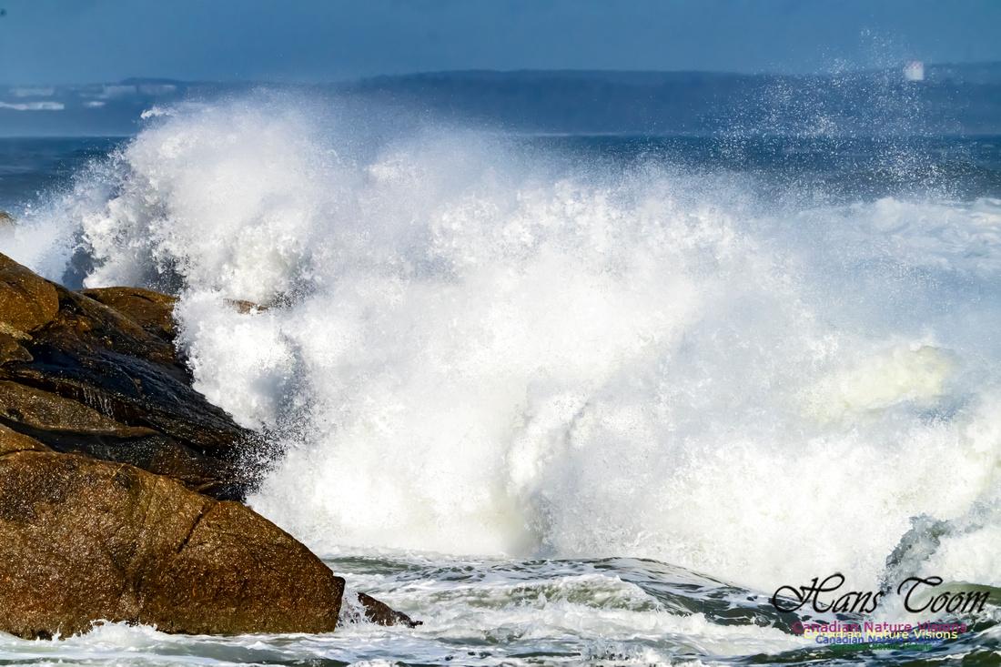 Surf on Rocks 102