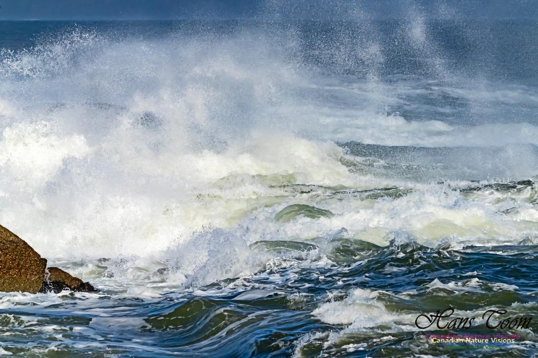 Surf on Rocks 103