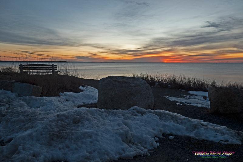 Herring Cove Sunrise 306