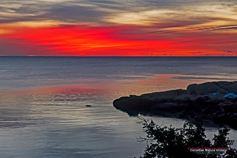 Herring Cove Sunrise 309
