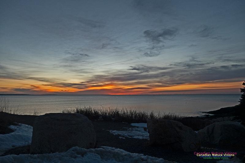 Herring Cove Sunrise 305