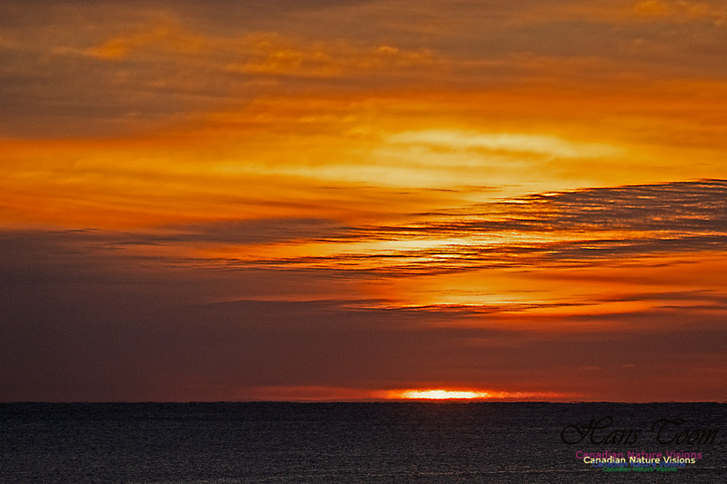 Herring Cove Sunrise 300