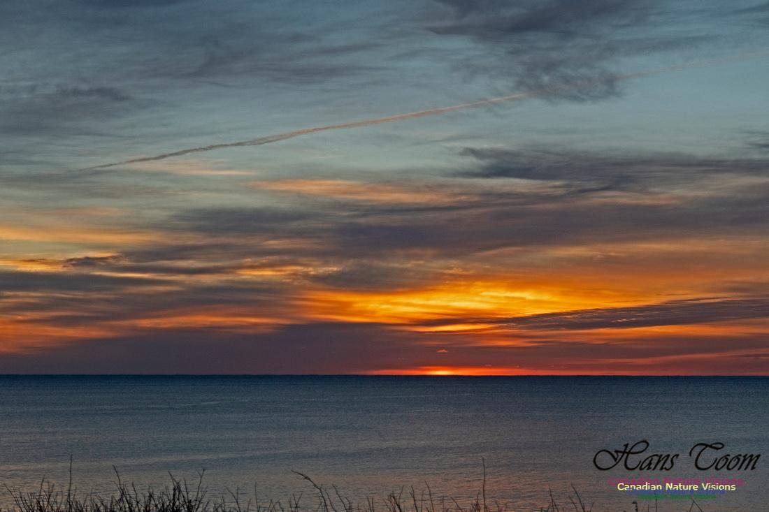 Herring Cove Sunrise 302