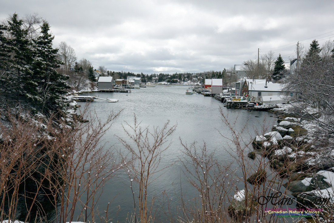 Chebucto Peninsula Early Spring Snow Storm (30)