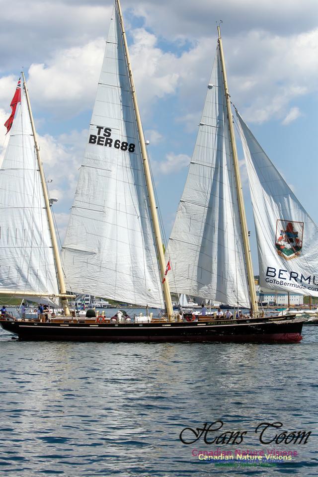 Spirit of Bermuda 1