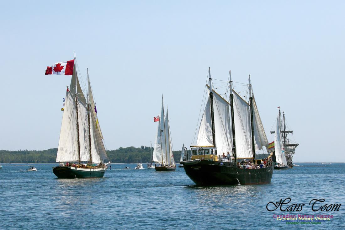 Flottila 2