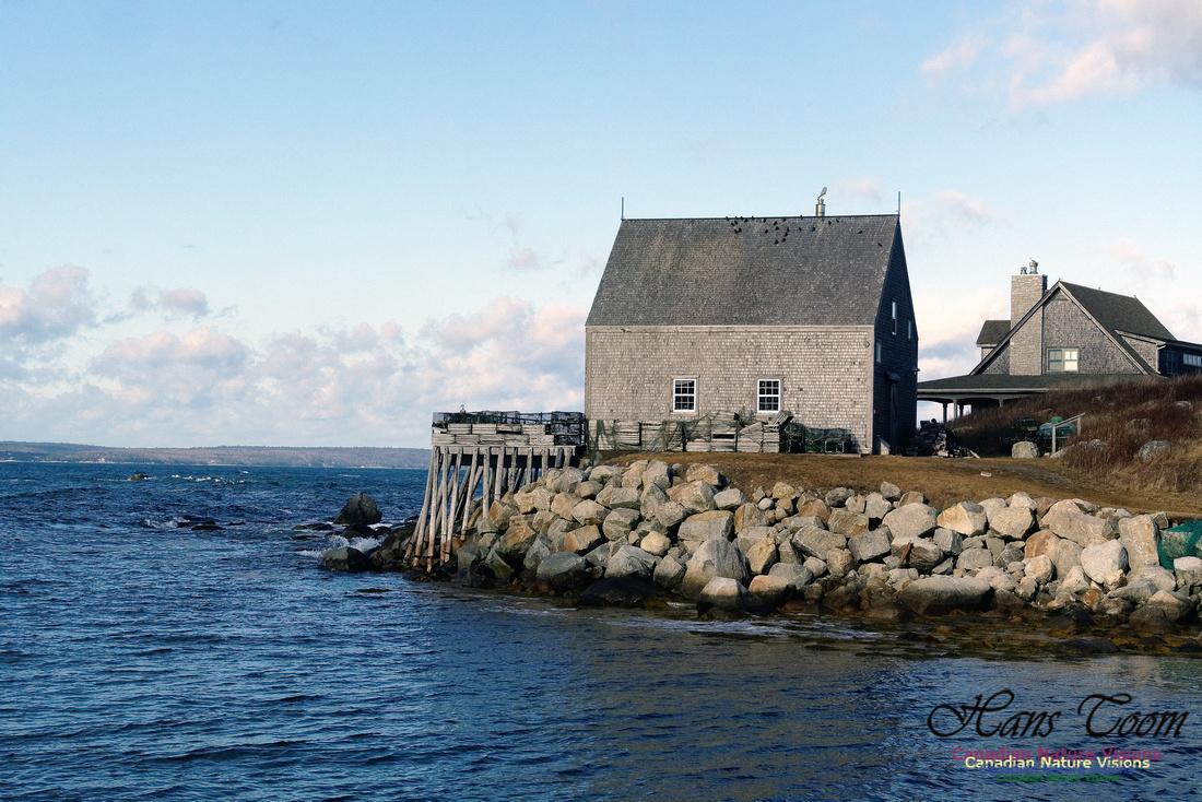 Peggy's Cove 7