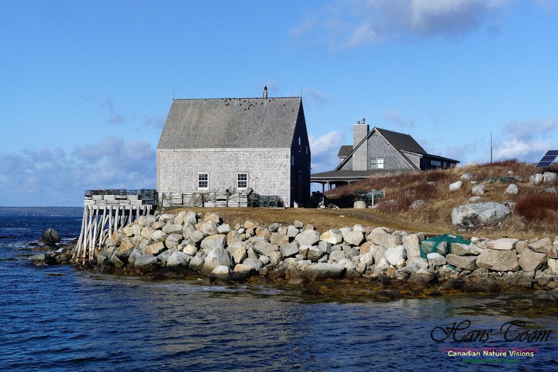 Peggy's Cove 6