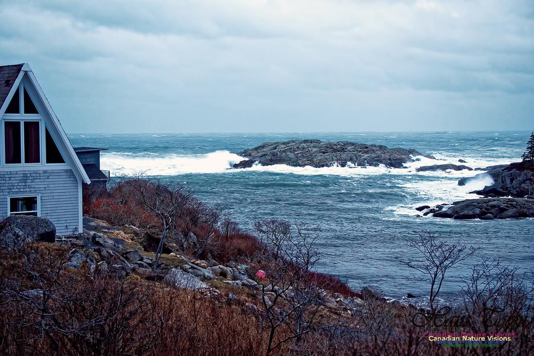 Duncan's Cove 1