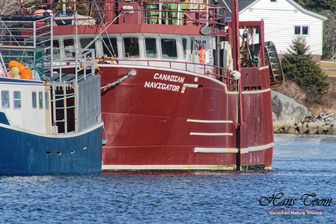 Offshore Fishing Boat 1