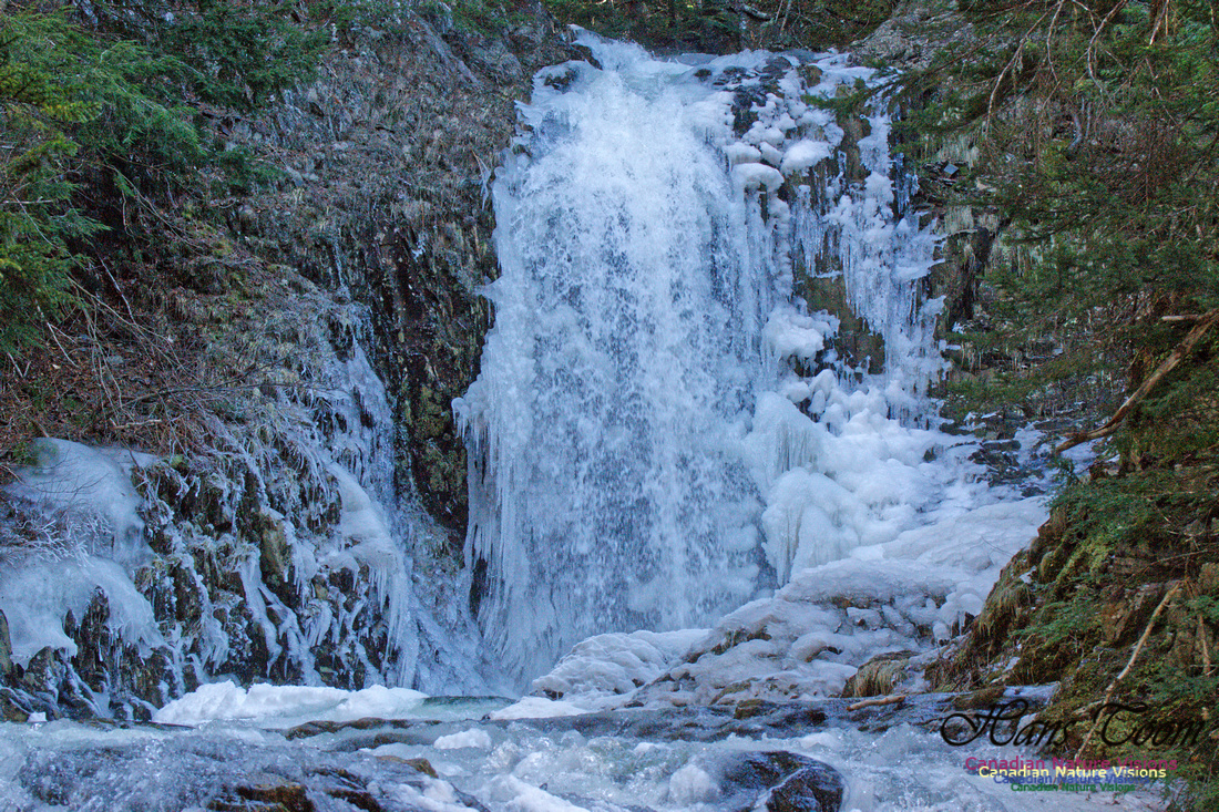 Water and Ice 4