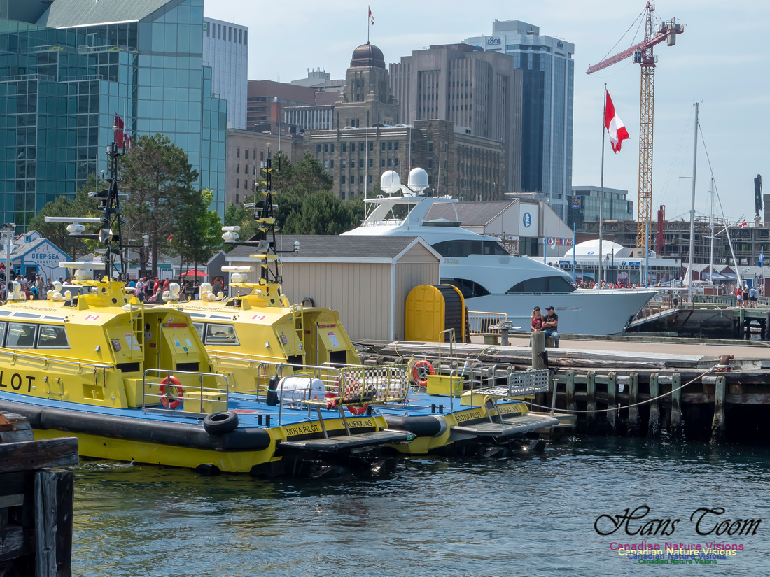Canada Day Halifax Waterfront 2018 12